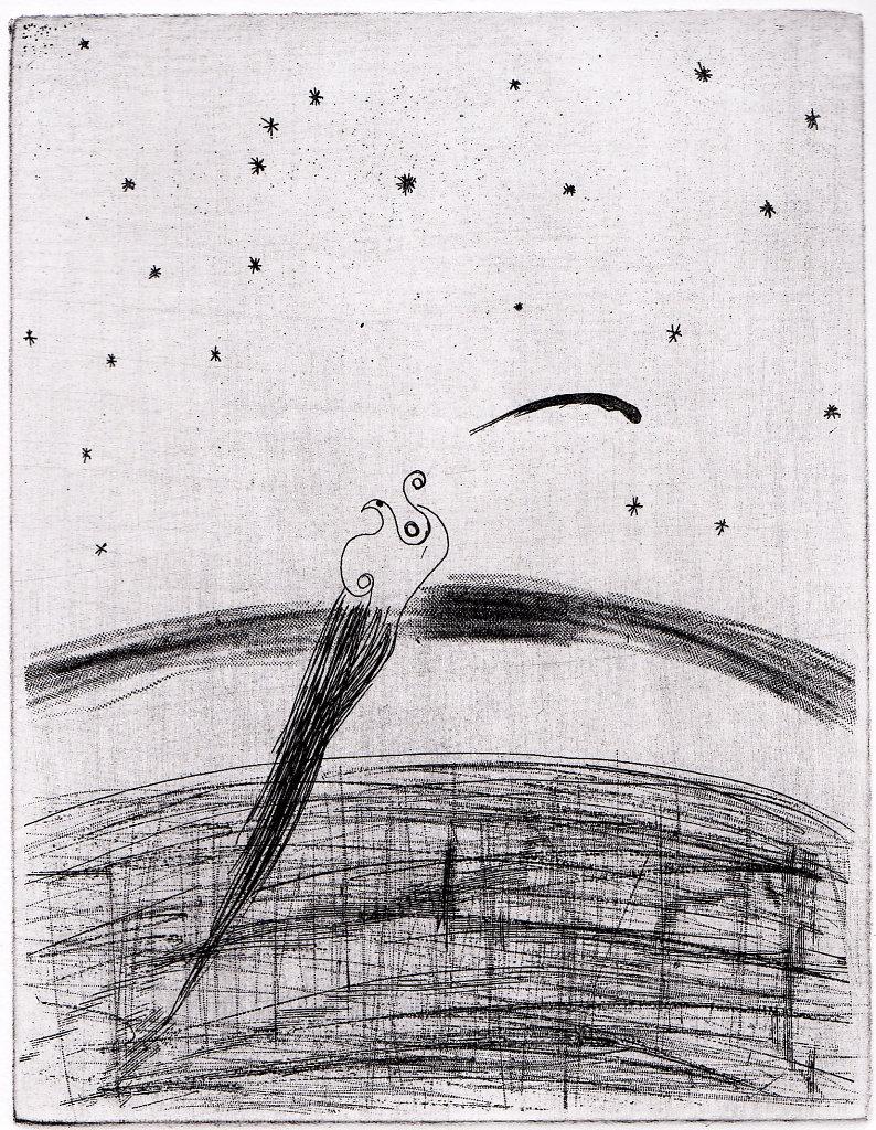 Bird1-1.jpg